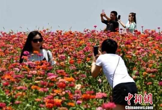 市民在花海公园留影游玩。 王东明 摄