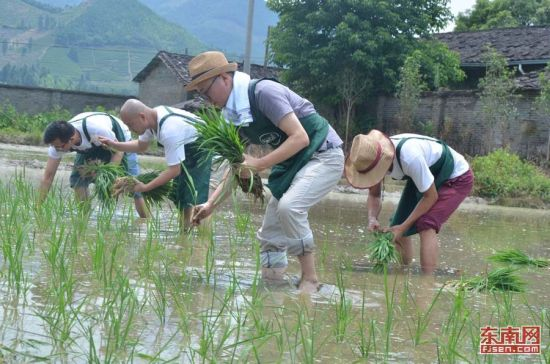 """寻慢团队尊崇""""自然而然""""的价值观,这是他们在田间地头的践行。"""