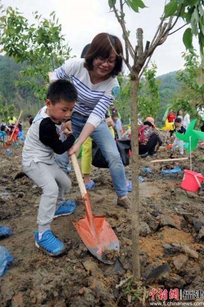 图为家长正在带领孩子种植樱花树苗。