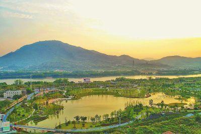 夕阳下的西院湖生态园