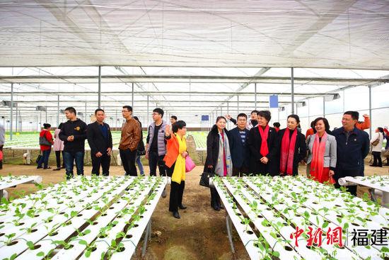 泉州市妇联党组书记、主席庄灿霞走进田间地头宣讲十九大精神