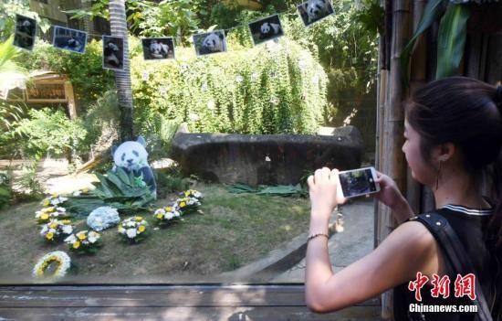 资料图:一名女青年在巴斯故居前用手机拍照留念。 刘可耕 摄