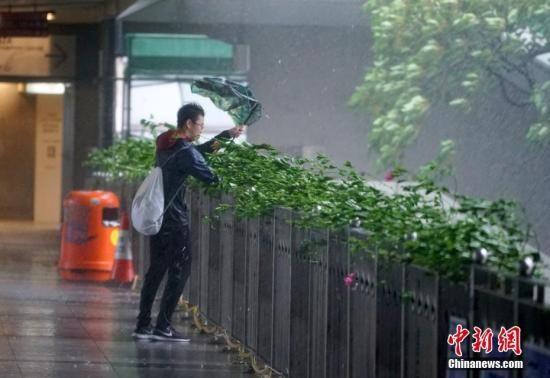 资料图:市民在台风天气下出行。中新社记者 张炜 摄