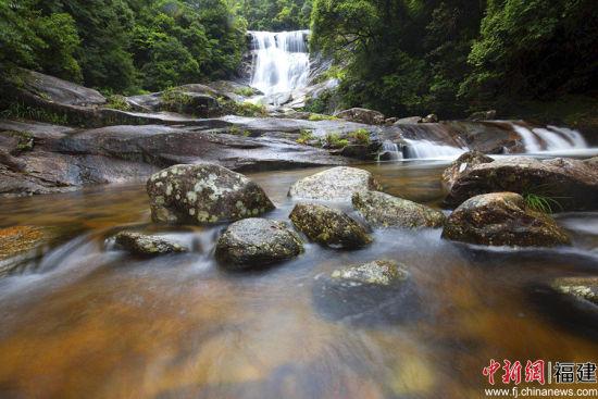 4武平的森林覆盖率已经达到了近80%,号称的天然氧吧。图为该县的梁野山国家级自然保护区景色。李雪红摄