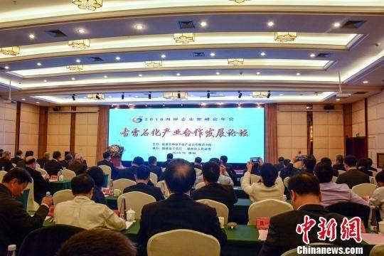 古雷石化产业发展论坛在福建漳州开展。 夏惠娟 摄