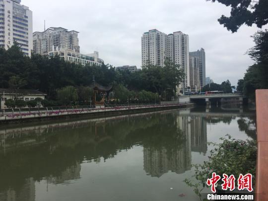晋安河越来越干净。叶秋云 摄