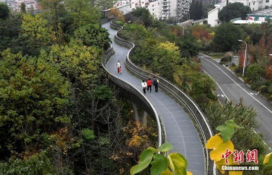 """资料图:福州城市森林步道——""""福道""""。中新社记者 张斌 摄"""