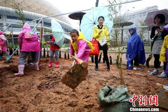 """""""第二届?我为大熊猫种口粮""""全民义务植树公益活动10日举办。 供图"""