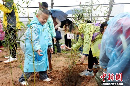 小朋友在园艺师指导下,将70株小竹苗种植在园区绿化种植区内。 供图