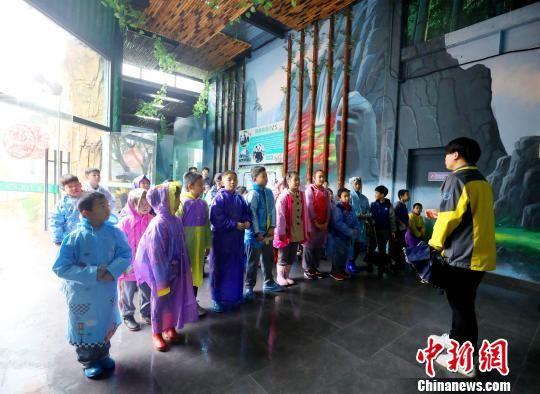小朋友们受邀来到熊猫外展馆,感受一场别开生面的国宝见面会。 供图