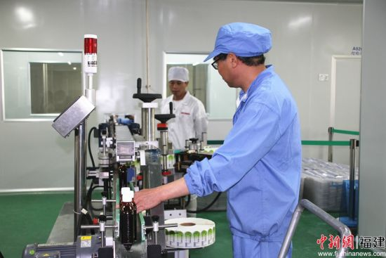 福建新武夷制药公司车间员工正在生产作业。凌月华 摄
