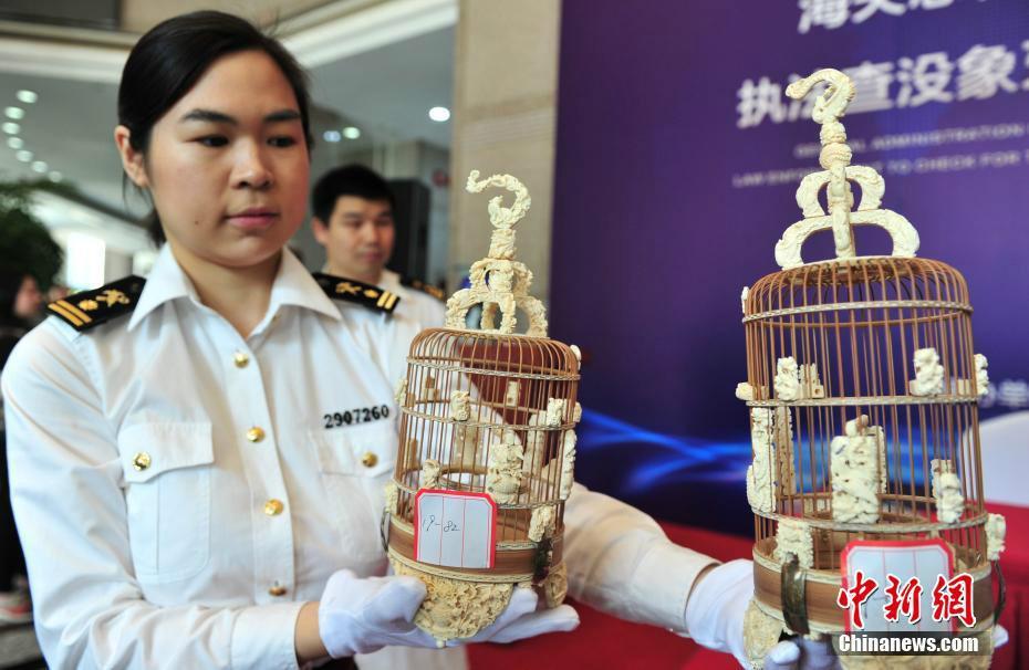 杭州海关移交近900公斤象牙等濒危物种制品