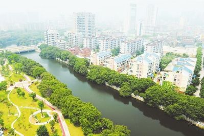水清岸绿的延寿溪莆田学院附属医院河段 本报记者 陈盛钟 摄