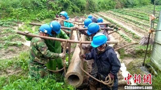 6月9日中午1时,洪水退后,清流供电公司员工在清流县嵩溪镇人工搬运电杆,避免了菜地被破坏,保护了村民财产。 郑扬飞 摄