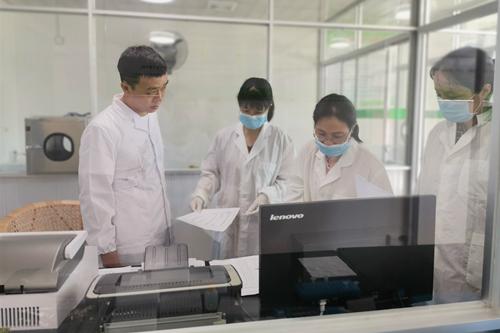 武平县加强屠宰场非洲猪瘟检测工作技术指导