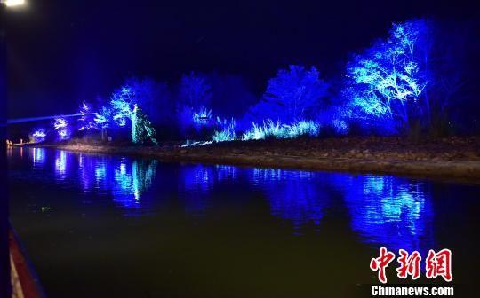 """图为""""夜游崇阳溪""""项目夜色迷人。 张丽君 摄"""