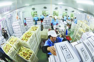 龙海市麦得隆食品厂忙出货。 本报记者 白志强 摄