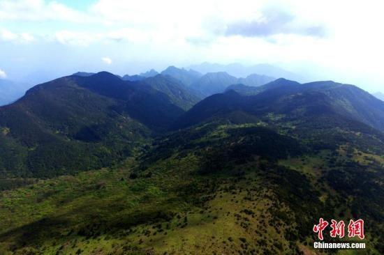资料图:鸟瞰武夷山国家自然保护区。王东明 摄