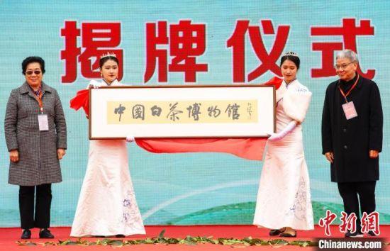 图为中国白茶博物馆主体落成授牌仪式。 刘超超 摄