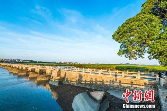 申遗点之一:洛阳桥。 杨福安 摄