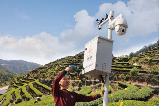 近日,周宁县首批智慧茶园投入使用,茶园内设置360度全球眼,实时在线监测温度、湿度、二氧化碳等数据。黄起青 摄