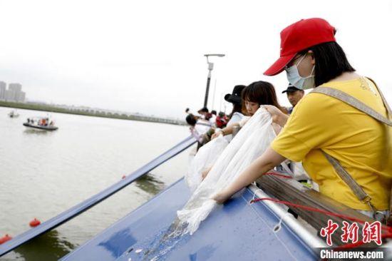 """6月6日""""全国放鱼日"""",厦门举办增殖放流活动。 李思源 摄"""