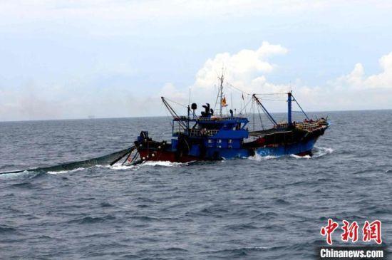 图为正在拖网作业的违法渔船。海警 供图