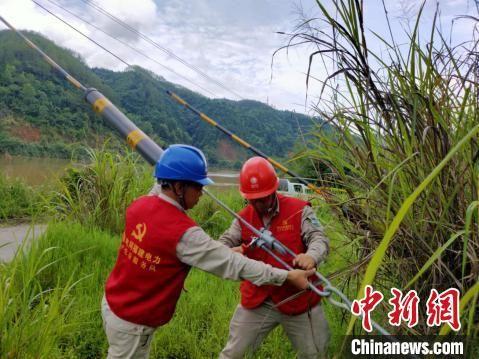 6月8日上午,将乐县供电公司员工对10千伏竹舟线沿河低洼地段杆基拉线进行加固。 郑承光 摄