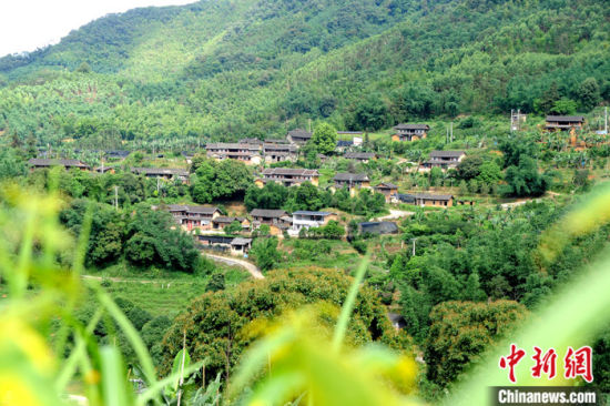 图为日前拍摄的海拔600多米的南高村,保留着古村落特色。 中新社记者 张金川 摄