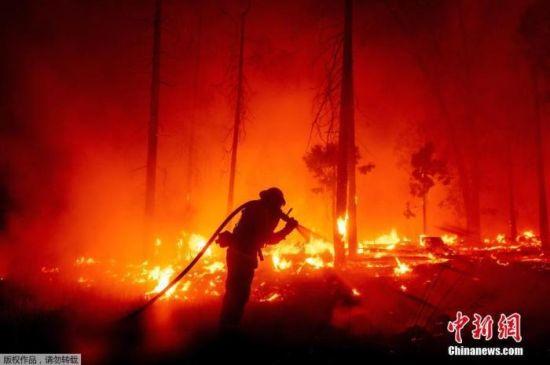 """在加州中部塞拉利昂国家森林猛玛池水库,唯一一条道路遭大火""""阻断""""。"""