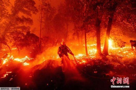 当地时间9月7日,加州山火持续燃烧,消防队员在火海中灭火。