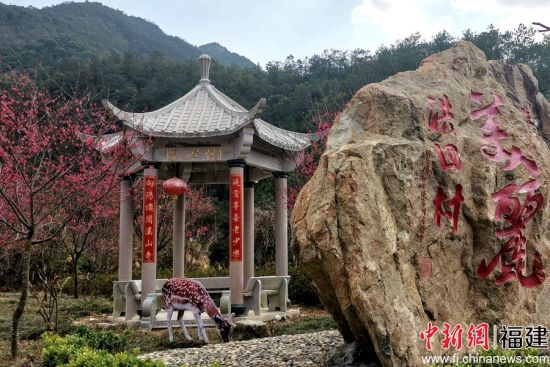 罗溪镇洪四村村口的樱花迎春盛放。
