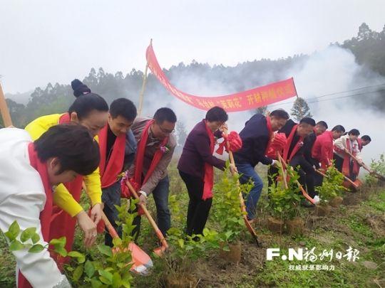 马台村茉莉花基地种下新苗。记者 余少林 摄