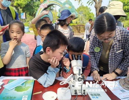 小朋友使用显微镜观察底栖动物。记者 林奕婷 摄