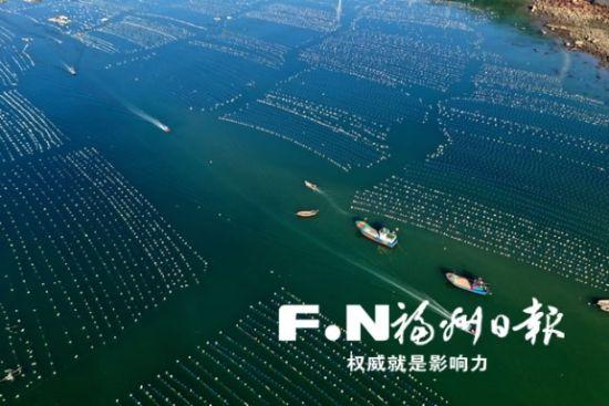 连江县海上鲍鱼养殖区。(连江县委宣传部供图)