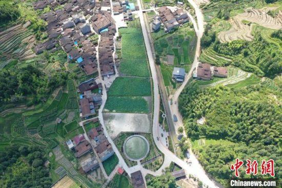 图为航拍下的凤林村。 甘叶斌 供图
