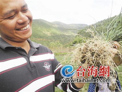 调整农业产业结构