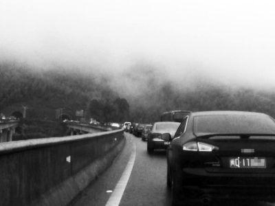 泉三高速大田路段大堵车图片由受访者林先生提供