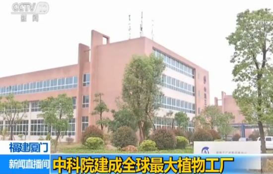 厦门:中科院建成全球最大植物工厂