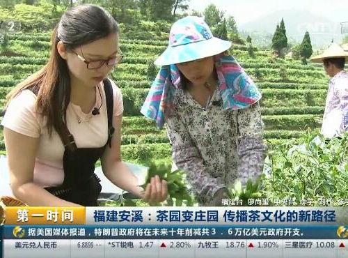 福建安溪:茶园变庄园 传播茶文化的新途径