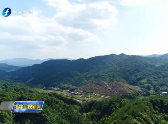 福建林改:生态美了 百姓富了