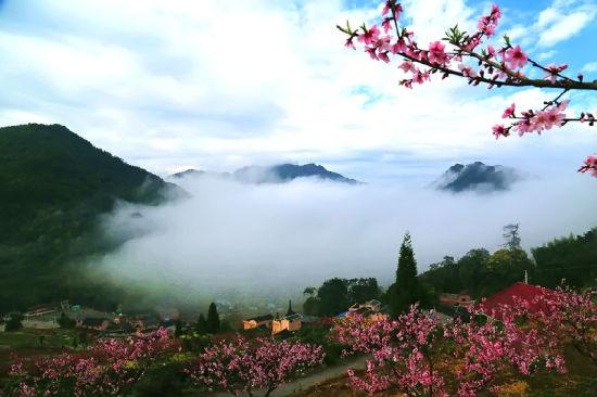 美景入画来 踏青悠然见南山