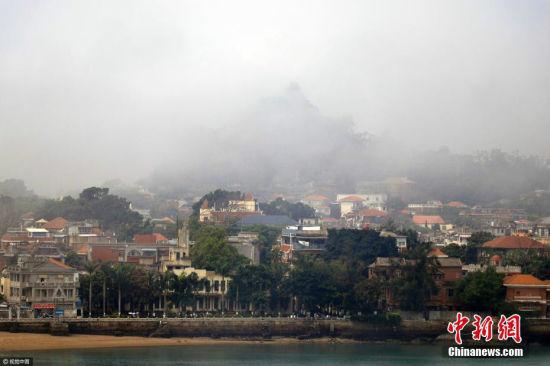 厦门变身雾都 雾中鼓浪屿如梦如幻