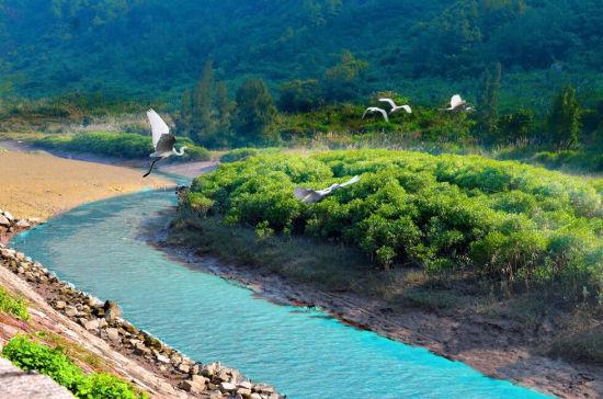 """罗源创建""""省级森林县城""""全面提速 打造特色""""生态名片"""""""