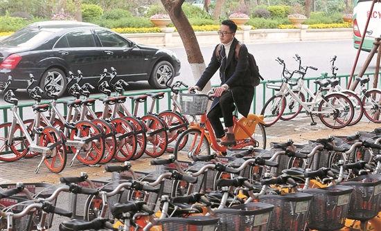 泉州进入共享单车时代:满街都是骑行人