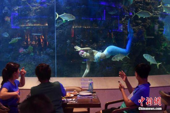 """厦门海洋主题餐厅 食客边吃边看""""美人鱼""""表演"""