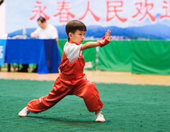 第九届海峡论坛·海峡两岸传统武术大赛在永春开赛