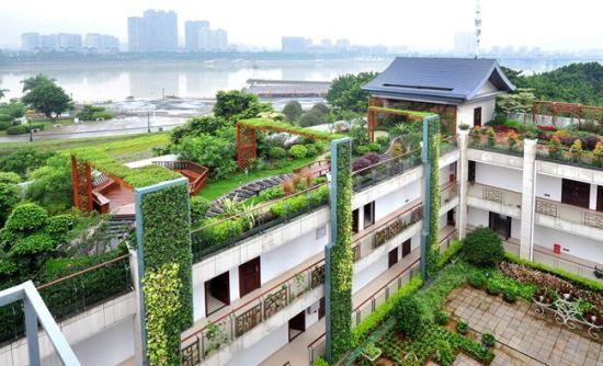 """福州大力绿化屋顶 9月前再建成多个""""空中花园"""""""