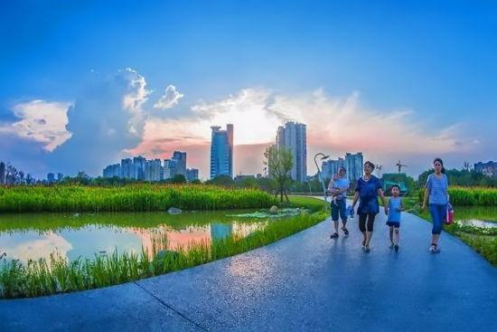 漳州:条条绿道串起湖光山色