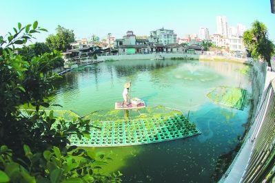 漳州内河:问渠那得清如许